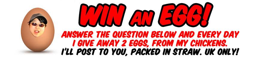Win an egg!
