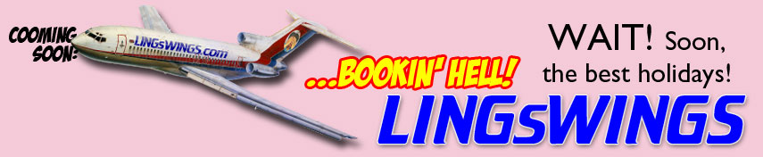 Book Your Next Holiday with LingsWings.com, What You Waiting For....